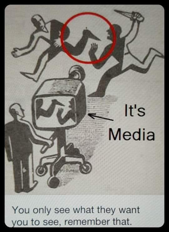 Media See